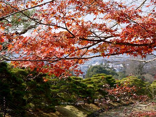 京都旅行(2日目)
